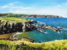 LARA SMITH oil on canvas - expansive coastline with sandy bay, entitled verso on Albany Gallery