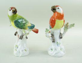 TWO MEISSEN PORCELAIN MODELS OF PARROTS, 20th Century, perched on tree stumps with sprouting leaves,