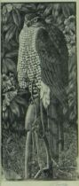 CHARLES FREDERICK TUNNICLIFFE OBE RA (1901-1979) limited edition monochrome wood engraving on