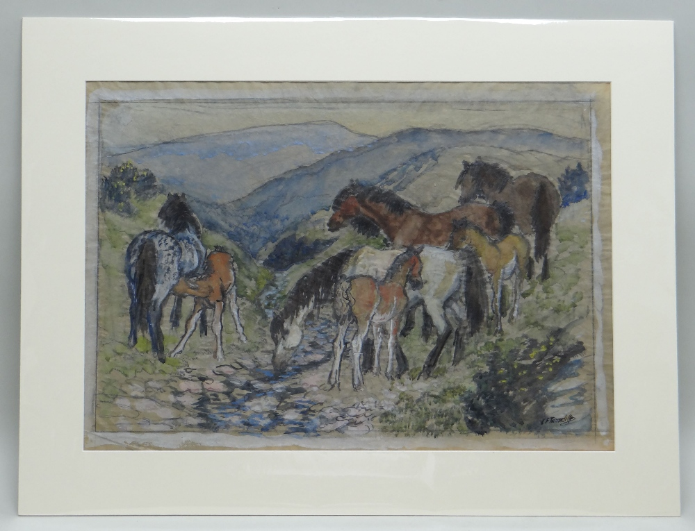 CHARLES FREDERICK TUNNICLIFFE OBE RA preliminary drawing in mixed media - ponies in a landscape, - Image 2 of 2