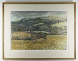 GLYN GRIFFITHS pencil and watercolour - landscape, entitled verso on Albany Gallery label, 'Clifton,