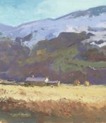 GARETH THOMAS oil on board - Welsh mountain with cottage, signed, unframed, 29 x 25.5cms