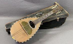 MUSICAL INSTRUMENT - Italian mandolin by 'Carlo Giuseppe Picino' in a vintage case