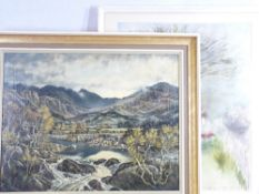 MOSS WILLIAMS oil on canvas laid on board titled verso - 'Cwm Pennant from Dolbenmaen, evening',