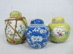 CHINESE PRUNUS DECORATED JAR - with double ring mark and two yellow ground jars, one decorated