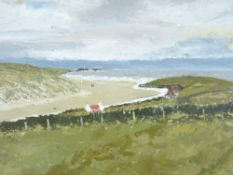OWEN MEILIR oil on board - coastal scene with red roofed cottage, signed, 42 x 55cms