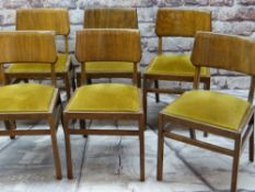 BEN OF FROME: EIGHT MID-CENTURY STAINED BEECH LOUNGE CHAIRS, with bent plywood tablet backs, mustard