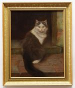 WILHELM SCHWAR (German, 1860-1943) oil on canvas - grey and white cat on the stoop, 50 x 39.5cms