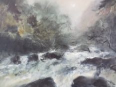 WILLIAM SELWYN limited edition print 102/300 - Snowdonia riverscape, signed in pencil, mounted but