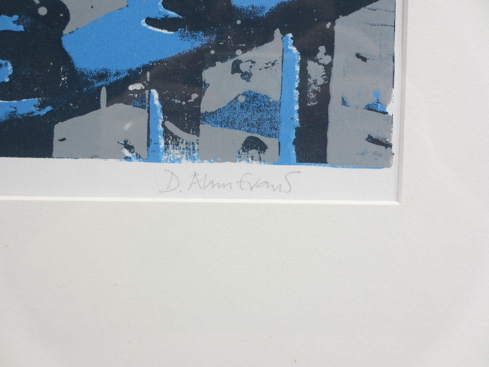 DAVID ALYN EVANS print - 'St Davids with non-conformist fence #4, signed in pencil, 40 x 29cms - Image 2 of 3