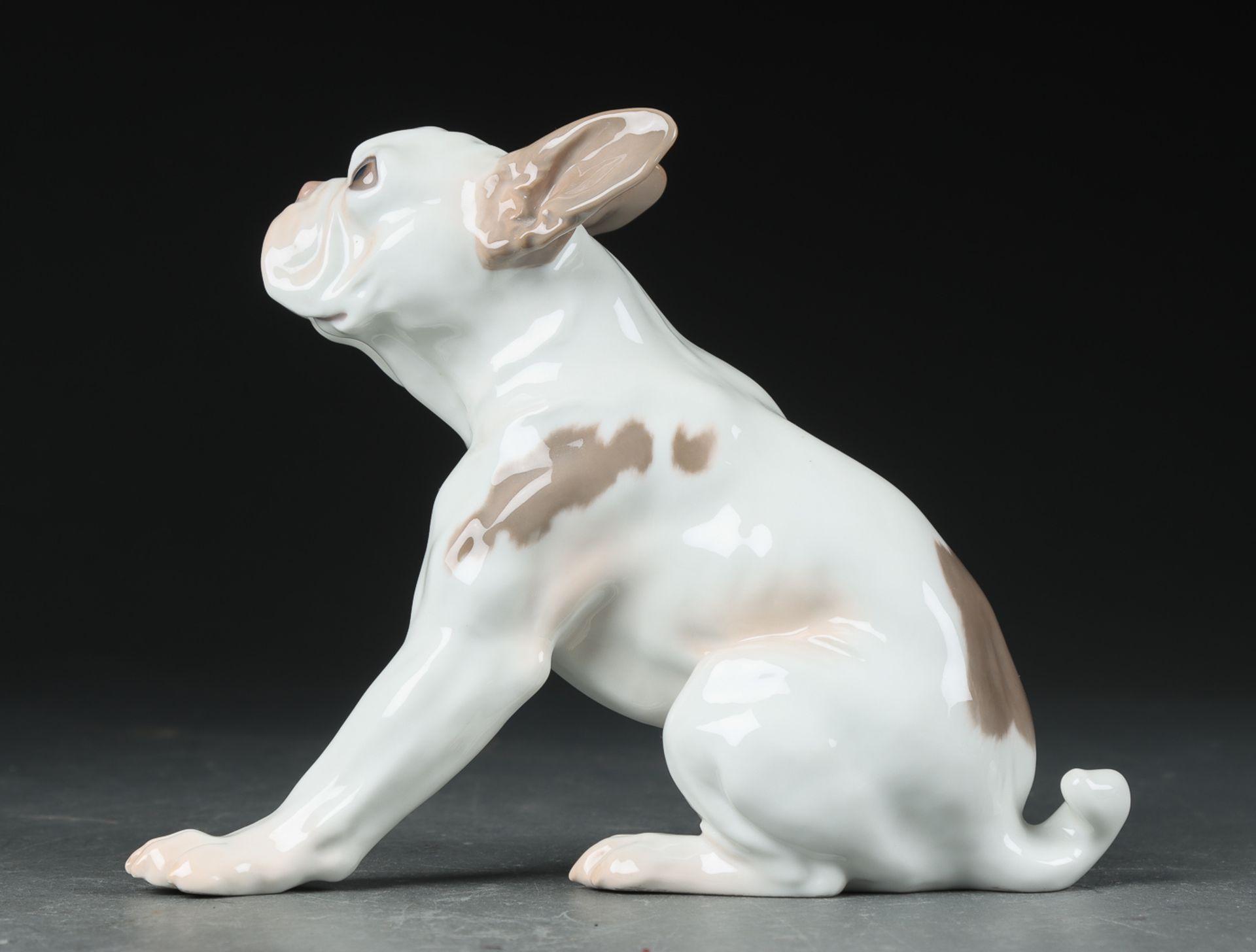 "Dahl Jensen for Bing & Grøndahl. Porzellanfigur. Französische Bulldogge sog. ""Bully"", nr. 2000. II. - Bild 2 aus 3"