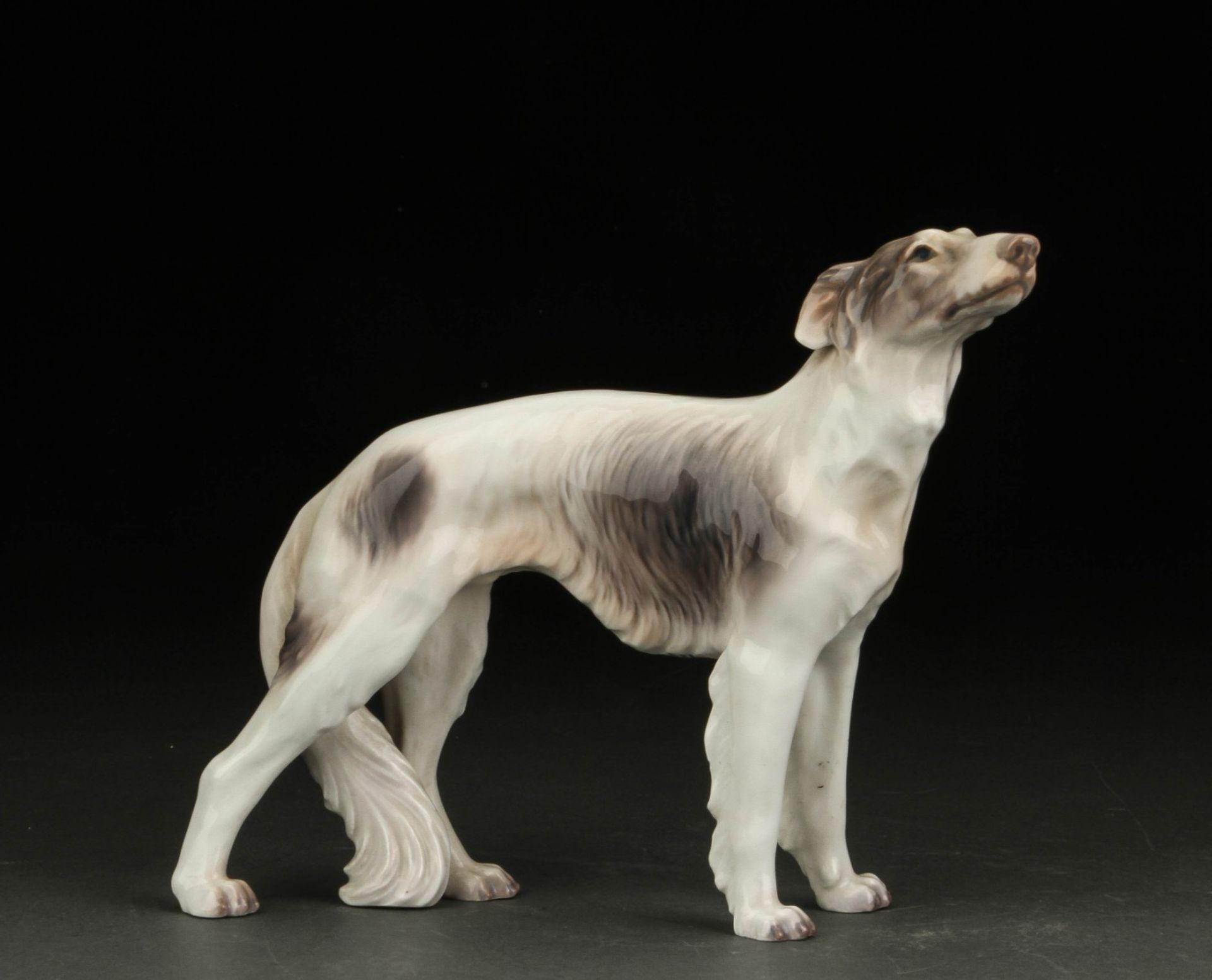 Dahl Jensen. Russischer Hirtenhund Porzellanfigur no. 1137 II.W. , H. 18 cm L ca 30cm. KOSTENLOSER