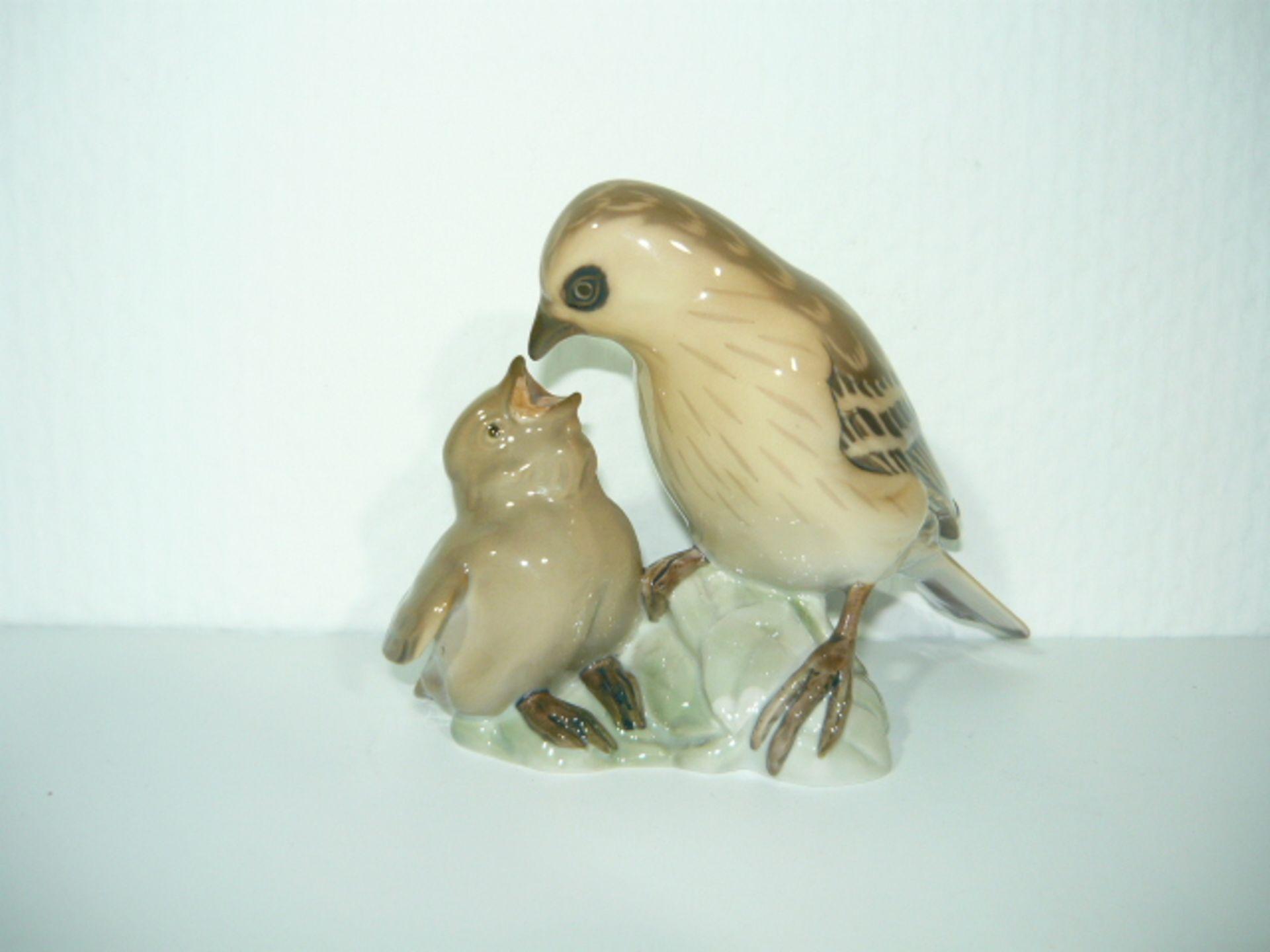 B&G Copenhagen. Porzellanfigur. Vogeljunges wird gefüttert. L. ca. cm. KOSTENLOSER VERSAND INNERHALB