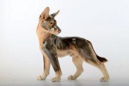 Bing & Grøndahl Porzellanfigur. Stehender Schäferhund Welpe. Modell 2018. I.W. Ca. 23x23cm.