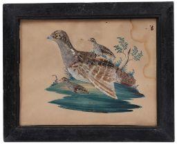 Federbild. Eger, 19. Jh. Aquarell auf Papier. Rebhuhn mit Jungen. Naturalistisches Federkleid