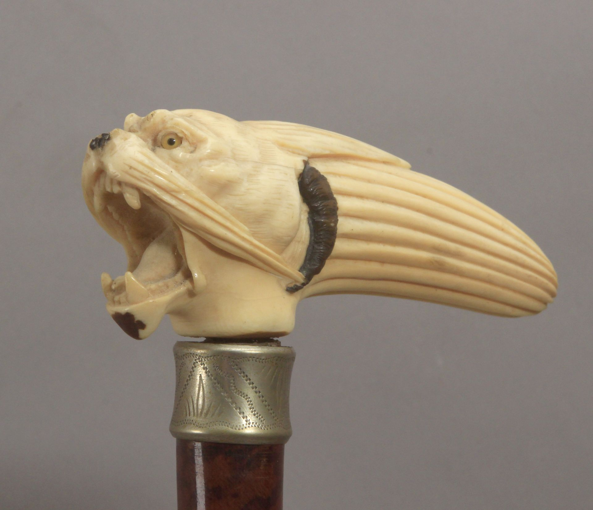 A 19th century ivory handled walking stick