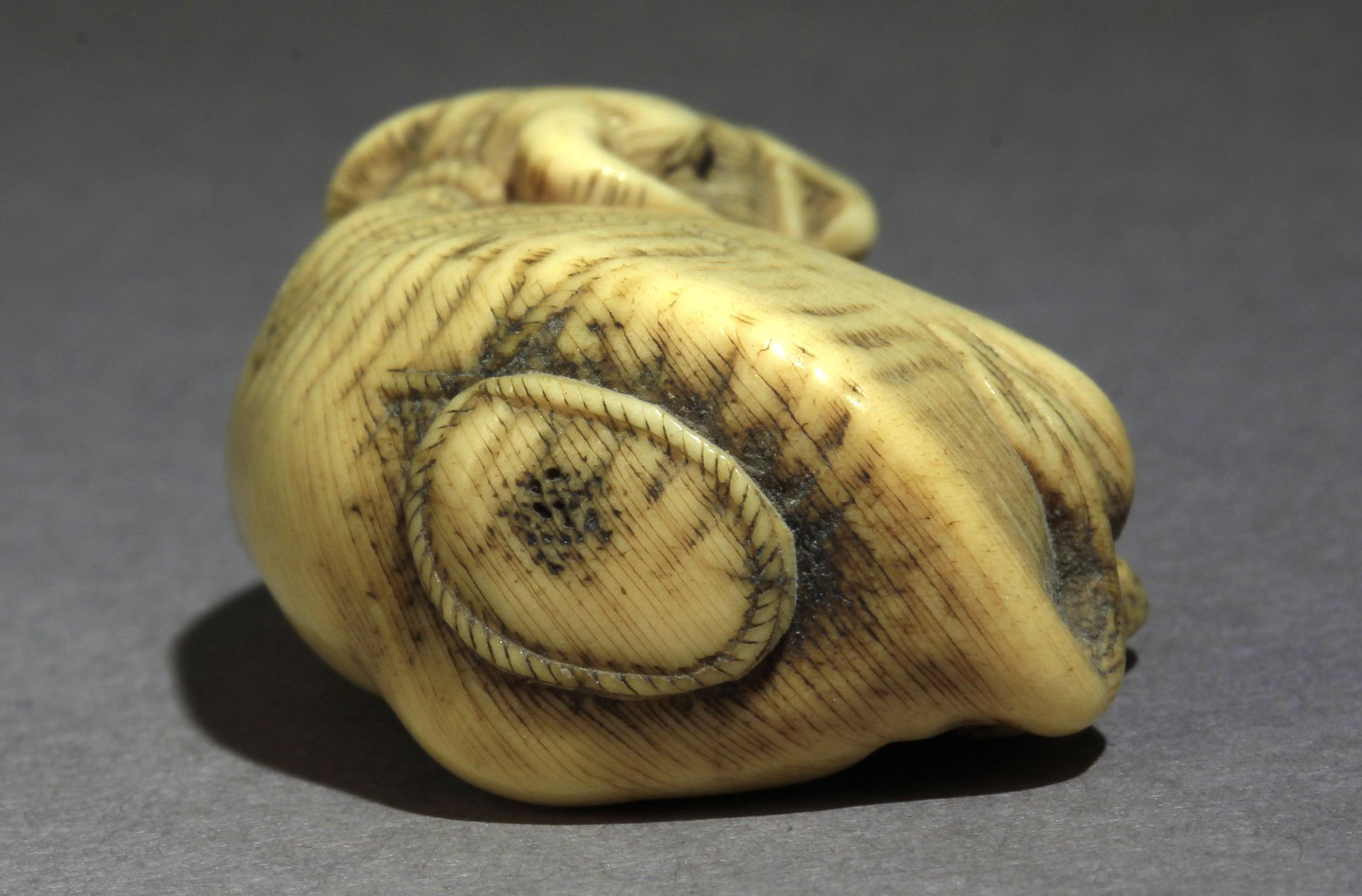 An early 19th century Japanese netsuke from Edo period - Image 5 of 7
