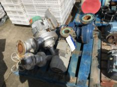 Three Assorted Pumps , serial no. N/A, plant no. N/A, year of manufacture N/A, dimensions approx. -,