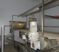 Inspection Conveyor, with platform steps, rollers