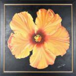 Carlo DiNapoli (20th/21st C) Amer, Oil/Canvas