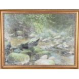 Gloria Young, Forest Pastel