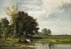 Kühe am Wasser