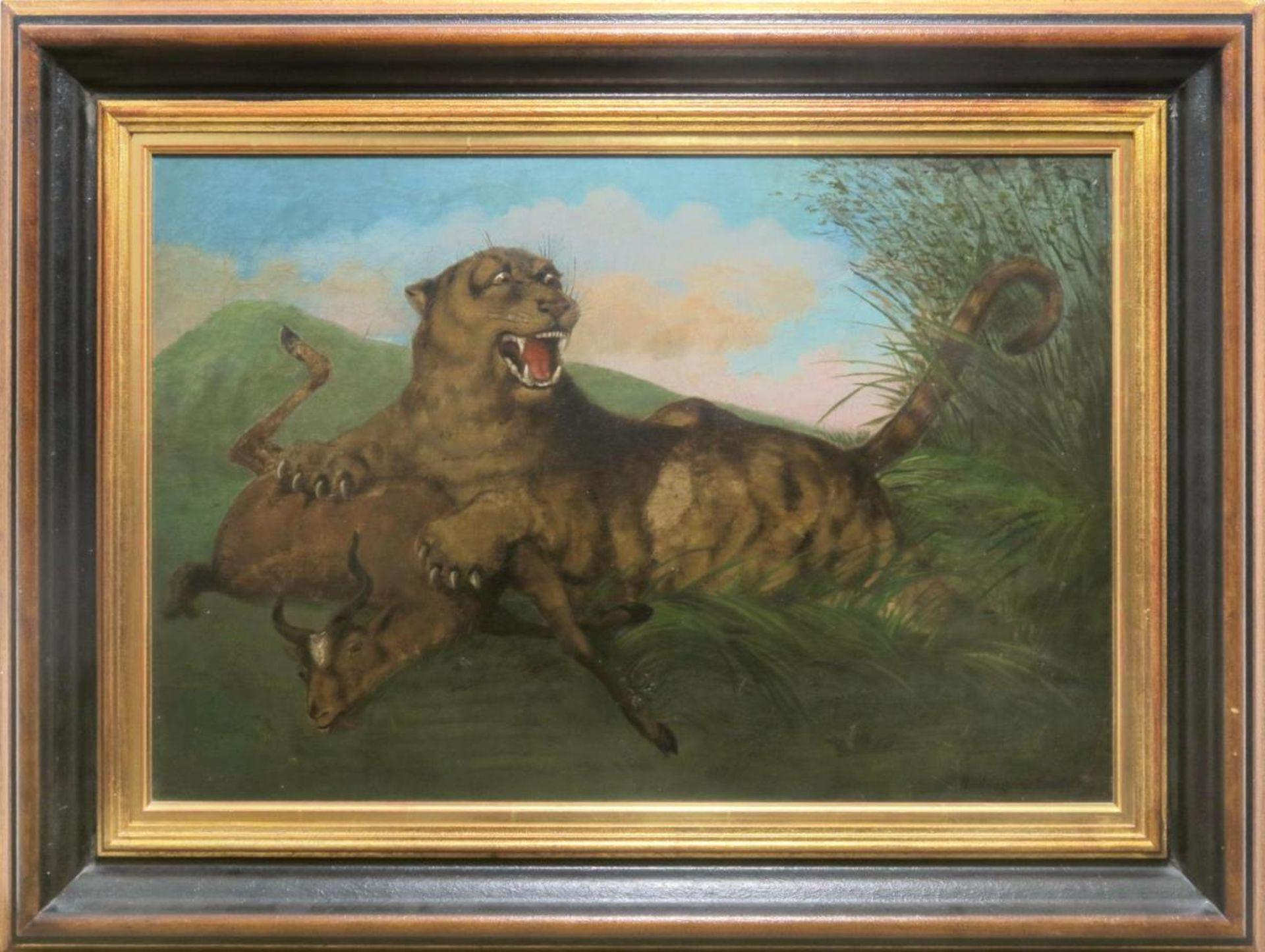 Ein Tiger reißt eine Antilope