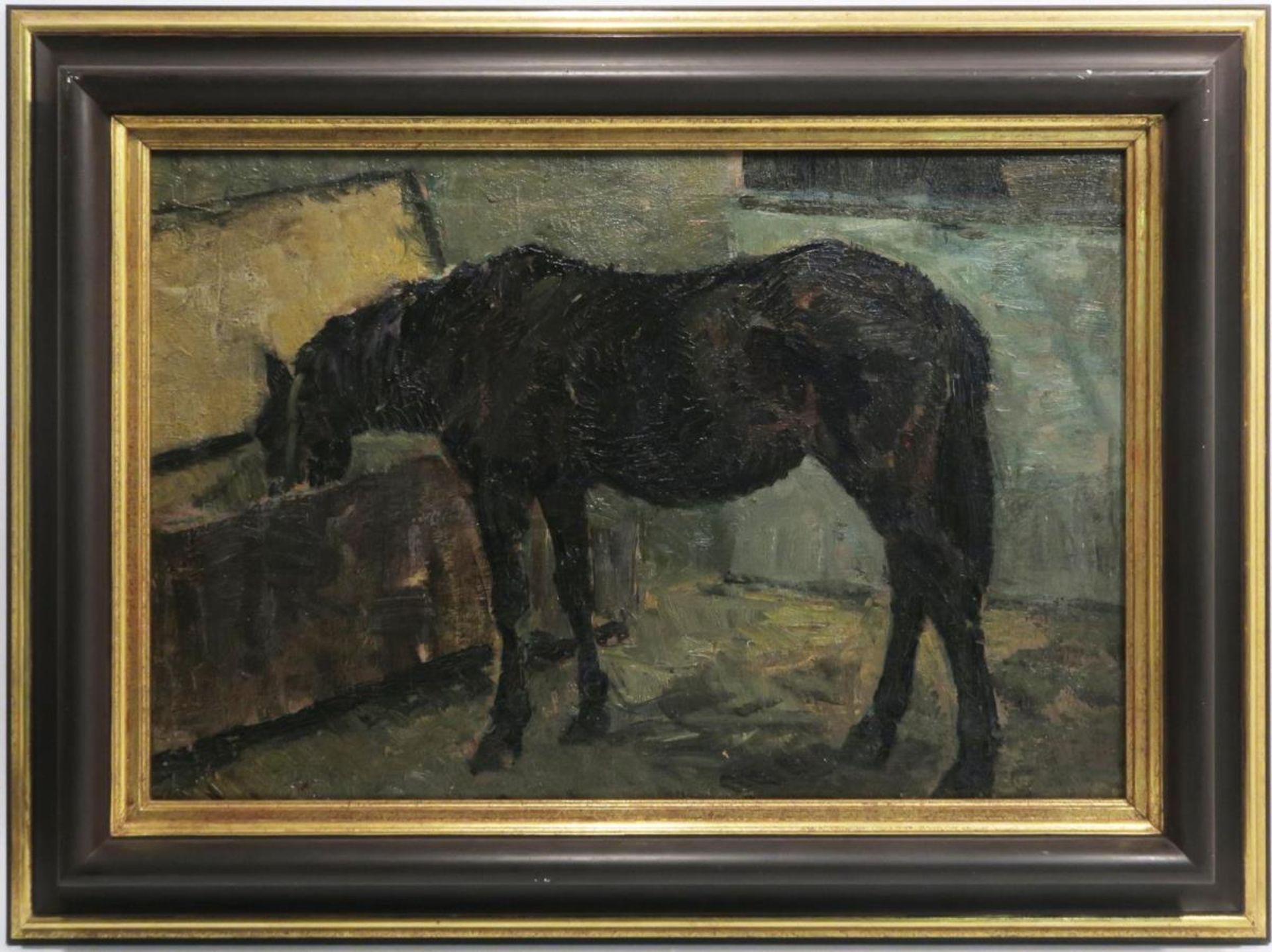 Pferd am Futtertrog
