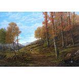 Herbstliche Landschaft mit Wanderer