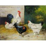 Hahn mit drei Hühnern