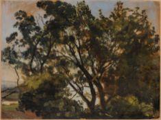 Christian Friedrich Gille, Baumkronen gegen blauen Himmel, im Hintergrund die Elbe (?). Um 1835...