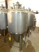 NEW Krones/ Cedarstone Industry Stainless Steel Jacketed Fermentation Tank, 4 BBL, Serial# CS19-51,