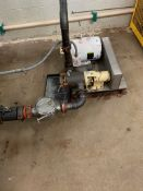 (Located in Burlington WI) Process Pump and Inline Magnet
