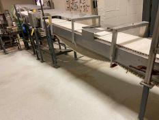 Material Processing Conveyor