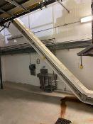 Incline Bucket Conveyor