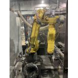 Fanuc M-20ia Robotic Case Cutting System S/N E14631093 With Fanuc System R-30is and Teach Pendant