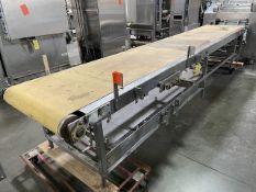 """Inspection Conveyor, 32"""" Wide x 16' Long, No Drive Rigging/Loading Fee $50"""