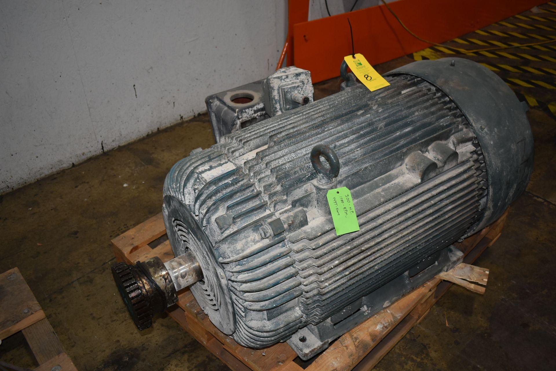 Bird 300 HP Motor, 1780 RPM