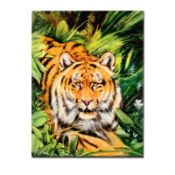 """""""Tiger Surprise"""" Limited Edition Giclee on Canvas by Martin Katon, Numbered and"""