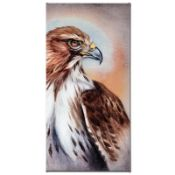 """""""American Redtail Hawk"""" Limited Edition Giclee Gallery Wrapped Canvas on Canvas"""