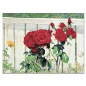 Roses by Fox, Perla