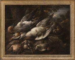 "Italian school; 17th century. ""Still life of birds"". Oil on canvas. Relined Presents repainting"