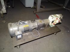 Wrightflow 1 Horsepower Motor and Pump