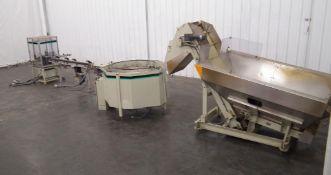 Hoppmann Unscrambler with Outfeed Conveyor