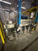 Triulzi Glass Processing Machines Washer