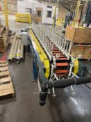 (2) Peg Conveyors