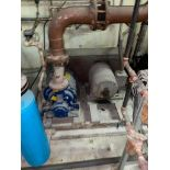 30 Horsepower Vacuum Pump