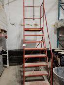 8 Step Warehouse Ladder