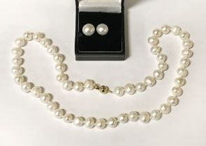 9CT GOLD LARGE PEARL STUD EARRINGS WITH MATCHING NECKLACE