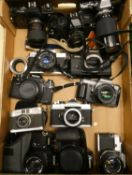 A collection of 35mm/digital cameras and camera bodies, including Ricoh KR-5, Olympus OM10, Pentax